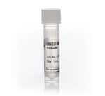 GeneAmp™ dNTP Blend (100 mM)