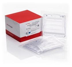 NuPAGE™ 12% Bis-Tris Protein Gels, 1.0 mm, 10-well