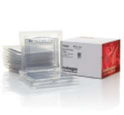 NuPAGE™ 3-8% Tris-Acetate Protein Gels, 1.0 mm, 10-well