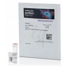 pHrodo™ Red Transferrin Conjugate