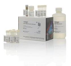 Qubit™ RNA BR Assay Kit