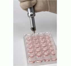 Neon™ Transfection System 100 µL Kit