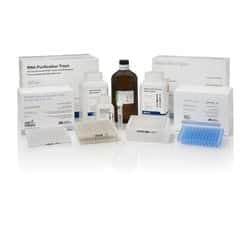 Total RNA Lysis Solution, Nucleic Acid Purification