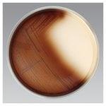Bacteroides Fragilis Isolation Agar