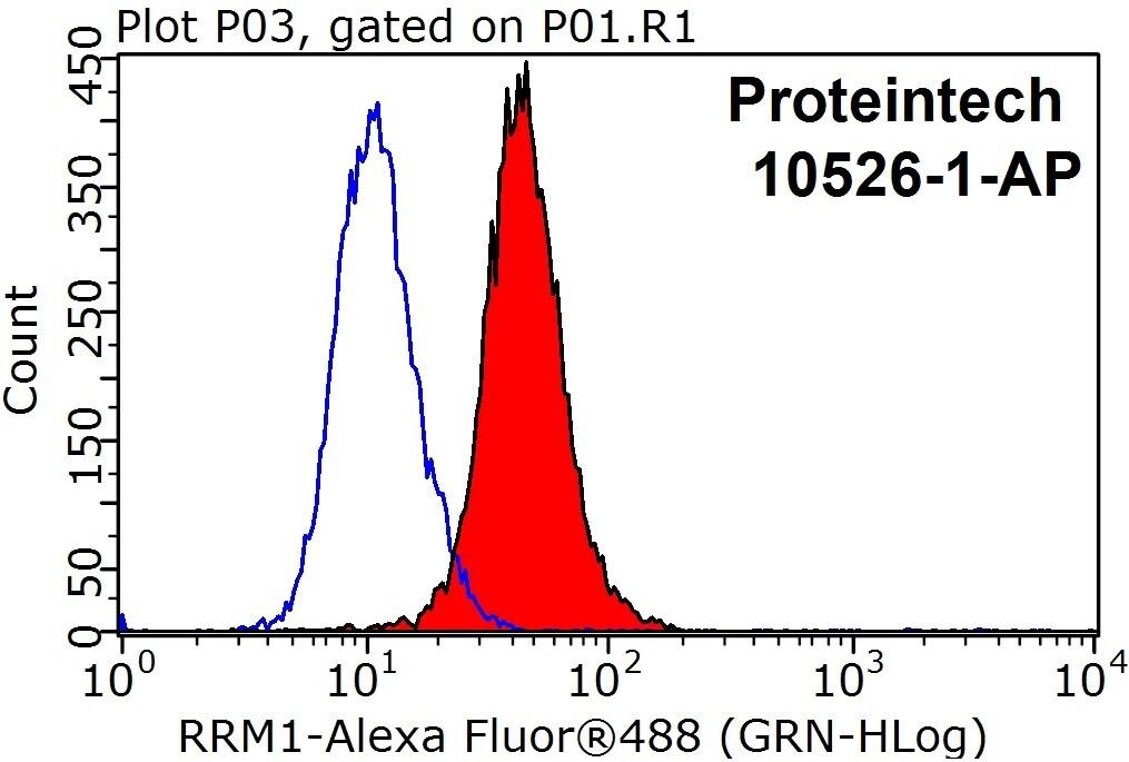 RRM1 Antibody in Flow Cytometry (Flow)