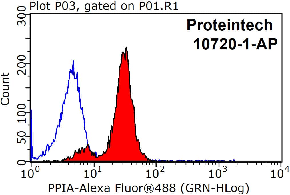 Cyclophilin A Antibody in Flow Cytometry (Flow)
