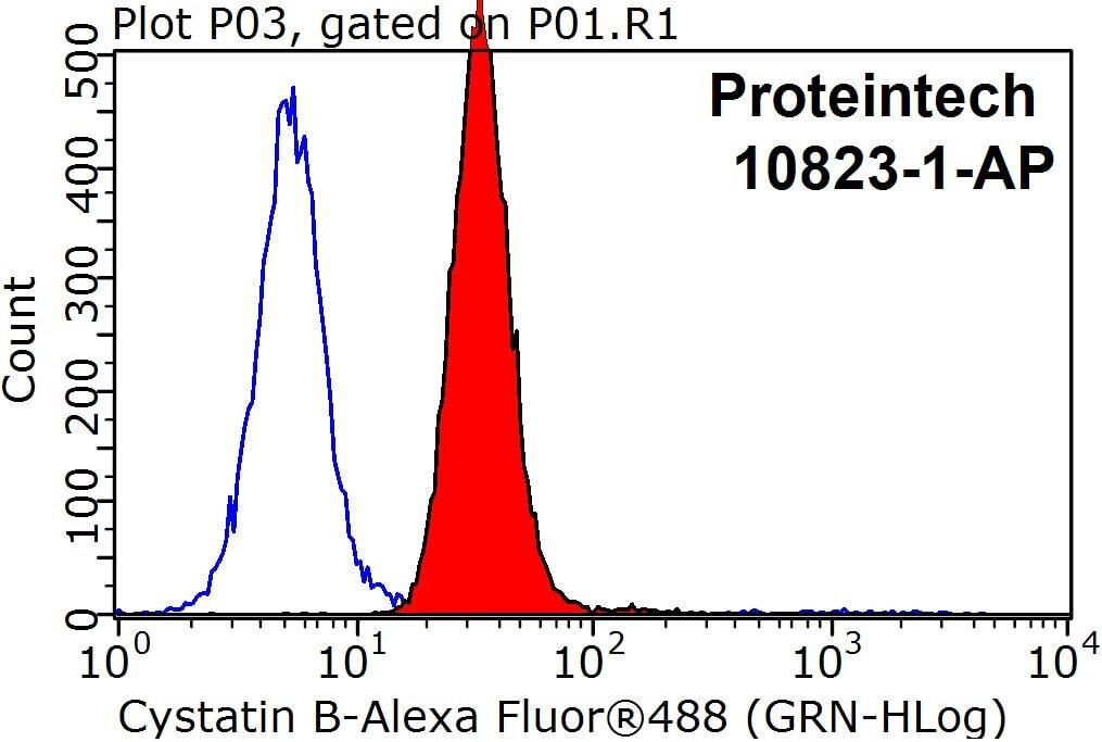 Cystatin B Antibody in Flow Cytometry (Flow)