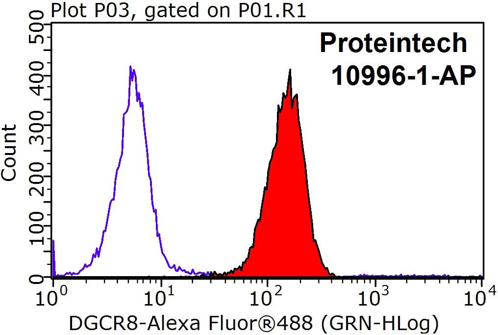 DGCR8 C-terminal Antibody in Flow Cytometry (Flow)