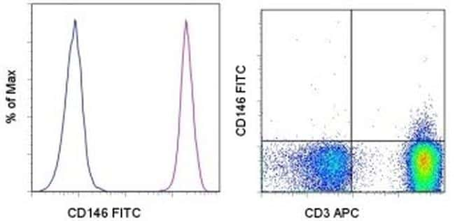 CD146 Antibody in Flow Cytometry (Flow)