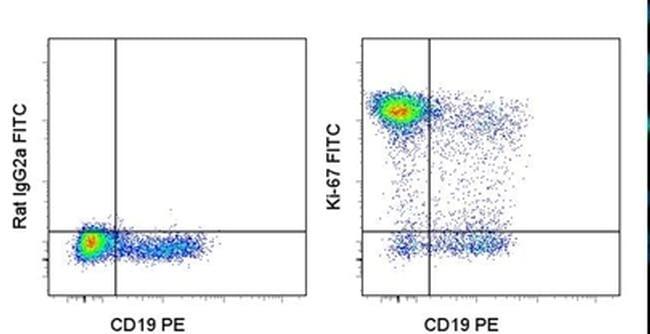 Ki-67 Antibody in Flow Cytometry (Flow)