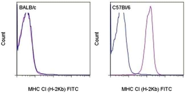 MHC Class I (H-2Kb) Antibody in Flow Cytometry (Flow)
