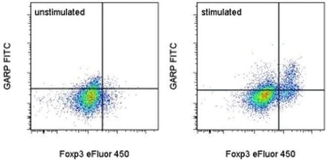 GARP Antibody in Flow Cytometry (Flow)