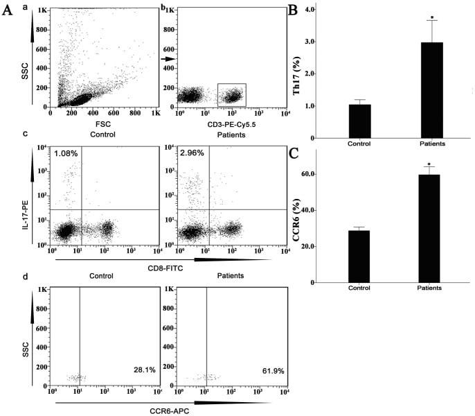 CD196 (CCR6) Antibody
