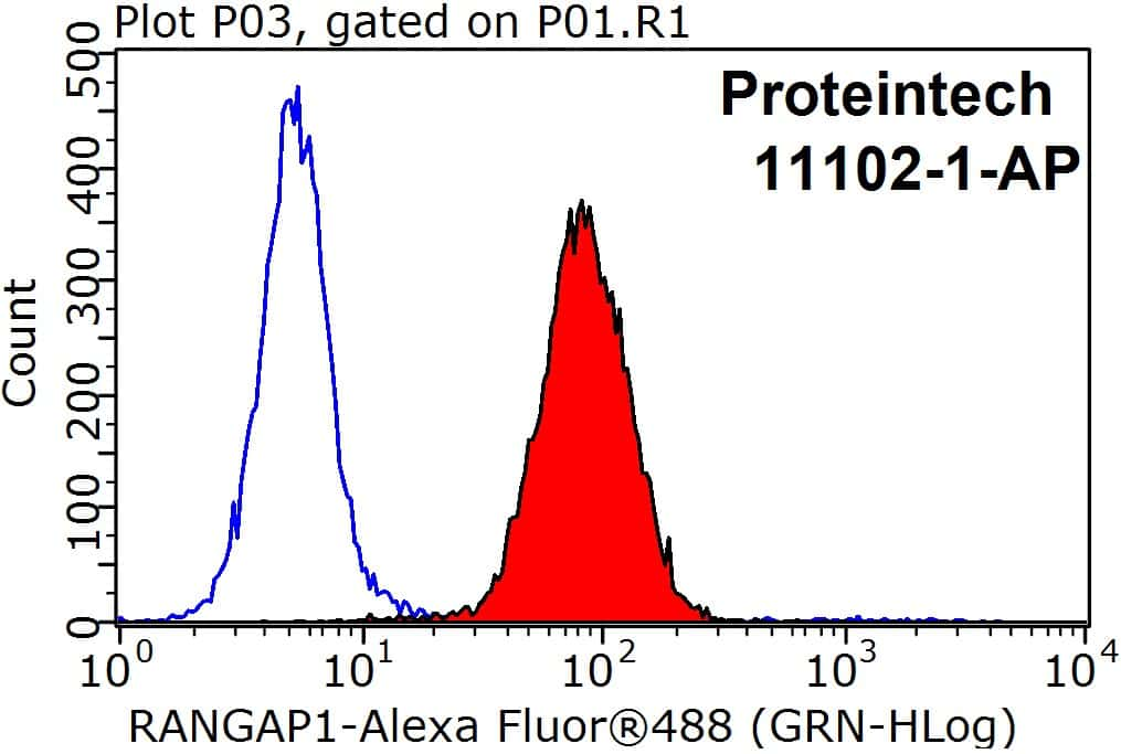 RANGAP1 Antibody in Flow Cytometry (Flow)