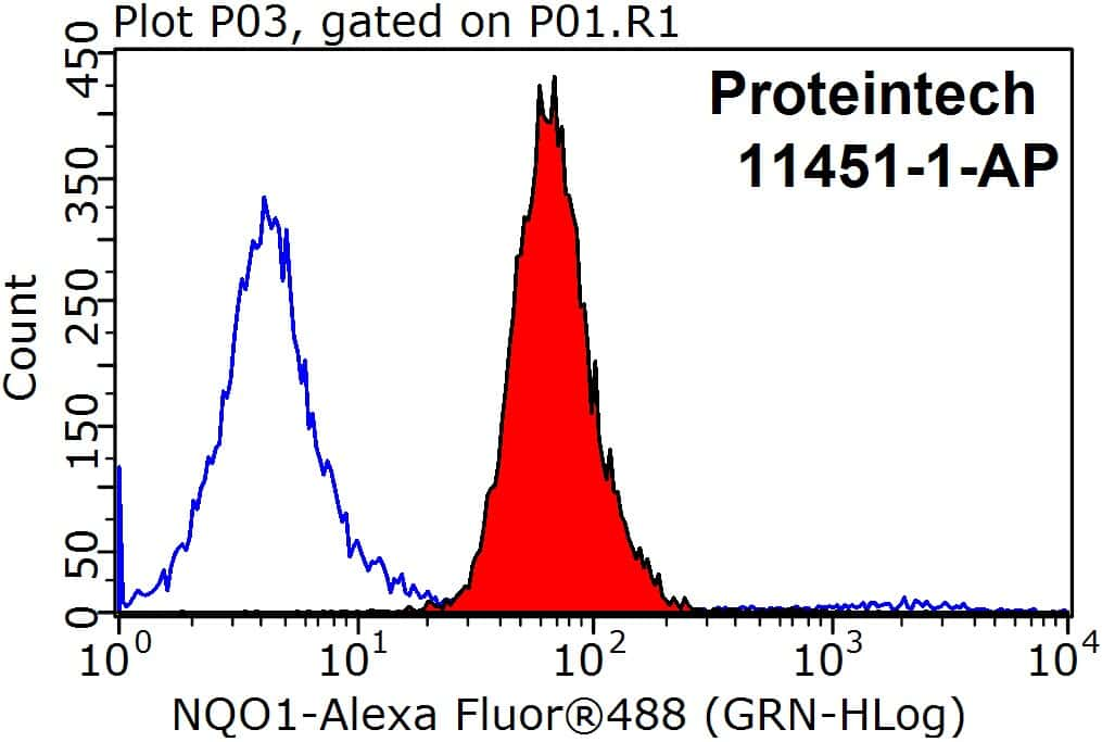 NQO1 Antibody in Flow Cytometry (Flow)