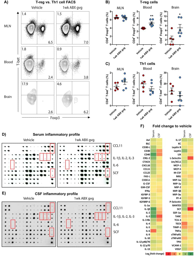 Foxp3 Antibody Monoclonal Fjk 16s Bms Ddc Wiring Diagram