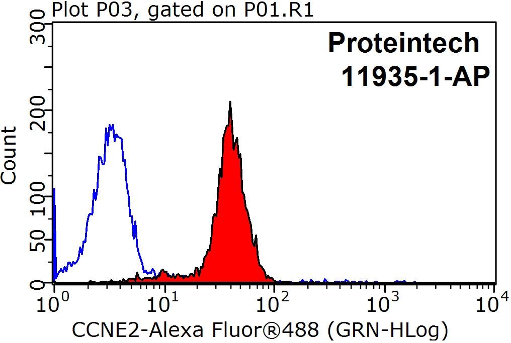 Cyclin E2 Antibody in Flow Cytometry (Flow)