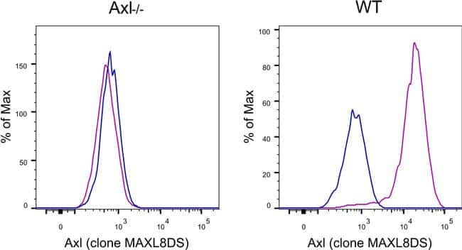 Axl Antibody in KnockOut