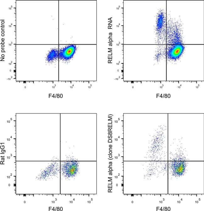 RELM alpha Antibody in Relative expression