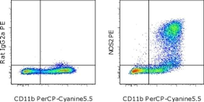 iNOS Antibody in Flow Cytometry (Flow)