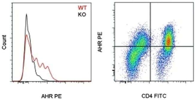 AHR Antibody in Flow Cytometry (Flow)
