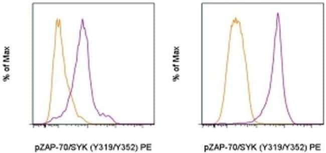 Phospho-ZAP70/Syk (Tyr319, Tyr352) Antibody in Flow Cytometry (Flow)