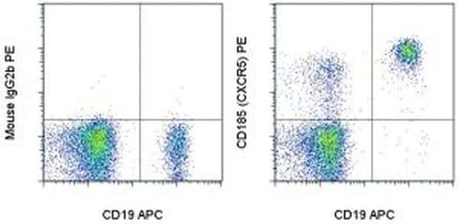 CD185 (CXCR5) Antibody in Flow Cytometry (Flow)