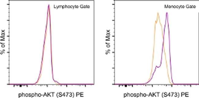 Phospho-AKT1 (Ser473) Antibody in Flow Cytometry (Flow)