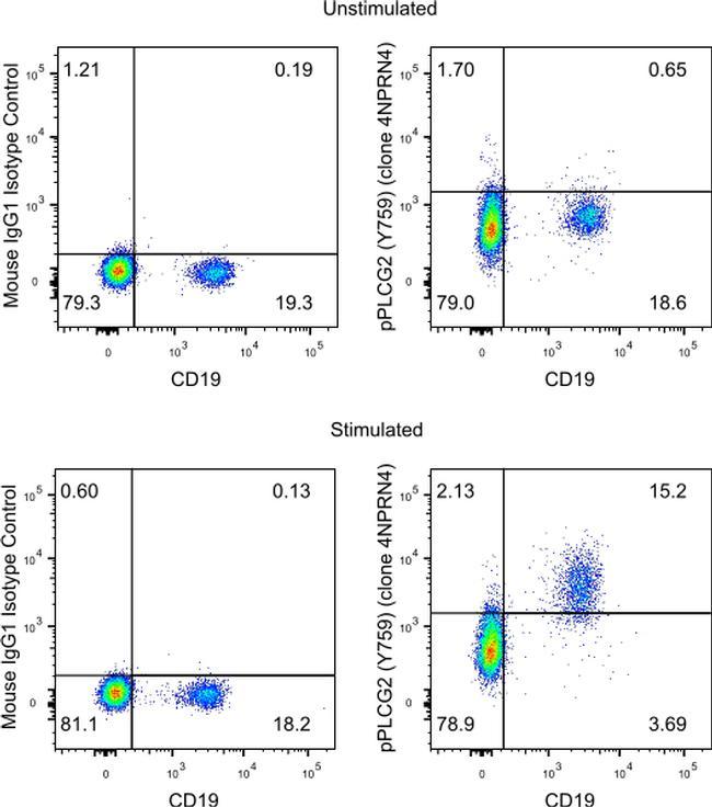 Phospho-PLCG2 (Tyr759) Antibody in Cell treatment
