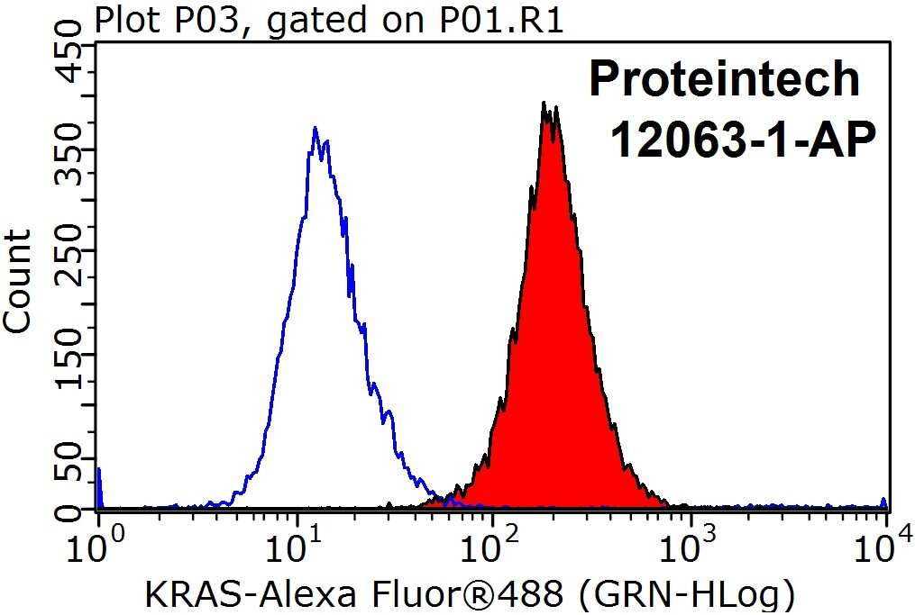 KRAS Antibody in Flow Cytometry (Flow)
