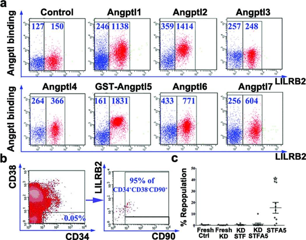CD85d (ILT4) Antibody