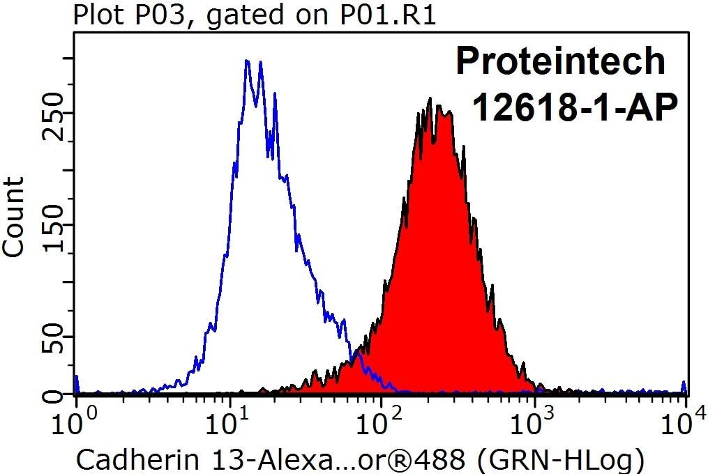 Cadherin-13 Antibody in Flow Cytometry (Flow)