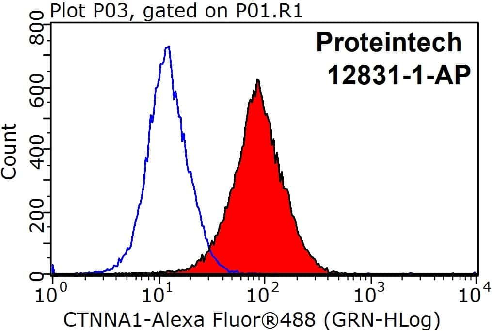 Alpha E catenin Antibody in Flow Cytometry (Flow)