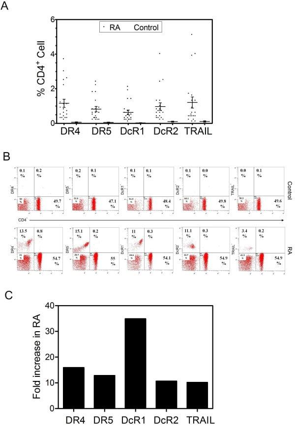 CD253 (TRAIL) Antibody