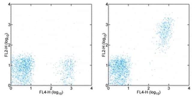 CD20 Antibody in Flow Cytometry (Flow)