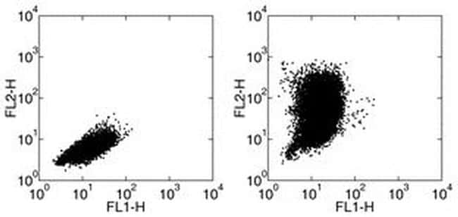 CCL2 (MCP-1) Antibody in Flow Cytometry (Flow)