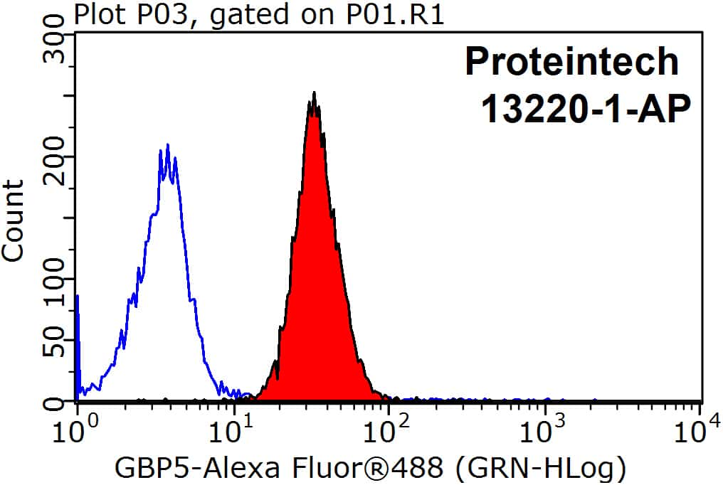 GBP5 Antibody in Flow Cytometry (Flow)