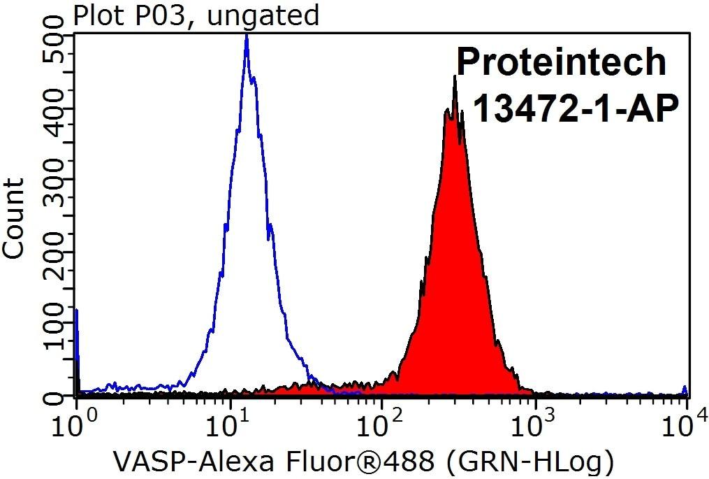 VASP Antibody in Flow Cytometry (Flow)