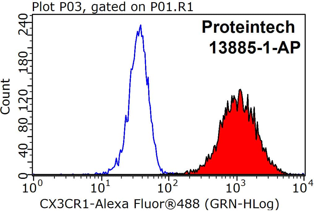 CX3CR1 Antibody in Flow Cytometry (Flow)