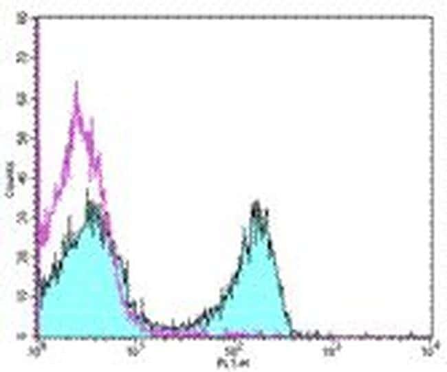 CD3e Antibody (Monoclonal, 145-2C11)