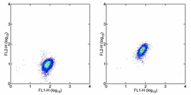 c-Met Antibody in Flow Cytometry (Flow)