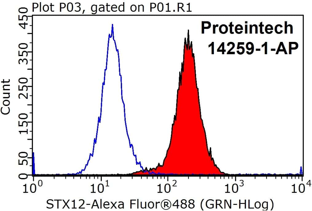 Syntaxin 12 Antibody in Flow Cytometry (Flow)