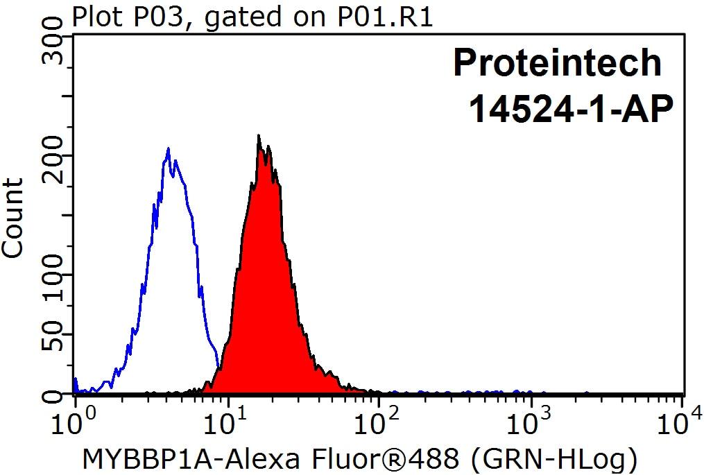 MYBBP1A Antibody in Flow Cytometry (Flow)