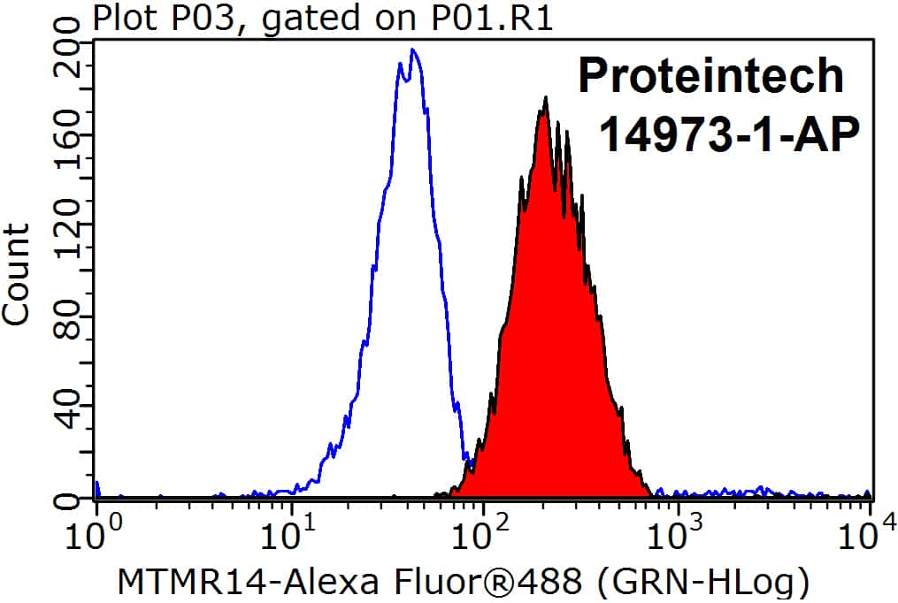 MTMR14 Antibody in Flow Cytometry (Flow)
