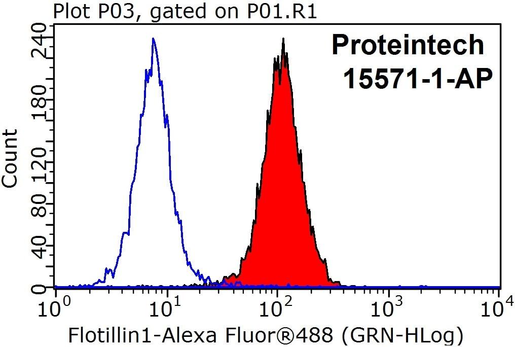 Flotillin 1 Antibody in Flow Cytometry (Flow)