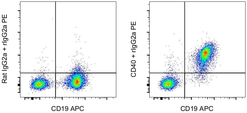 CD40 Antibody in Flow Cytometry (Flow)