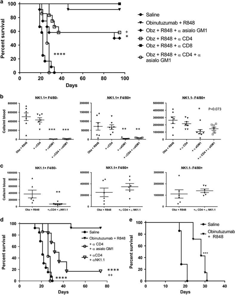NK1.1 Antibody