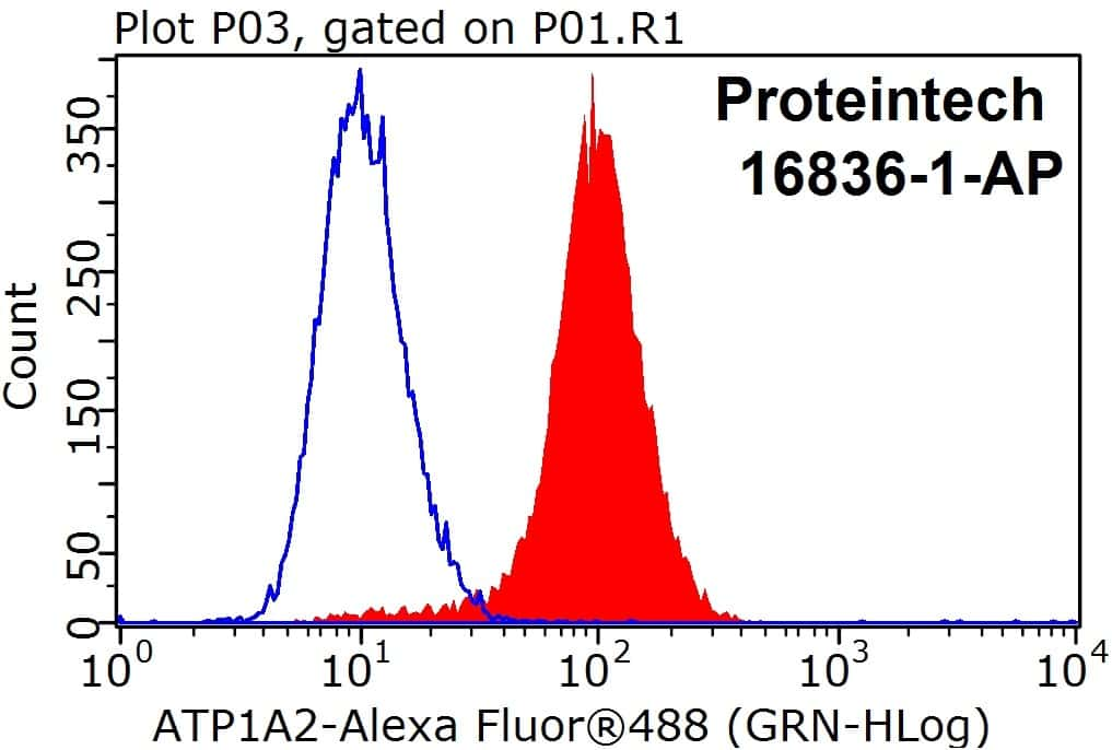 ATP1A2 Antibody in Flow Cytometry (Flow)