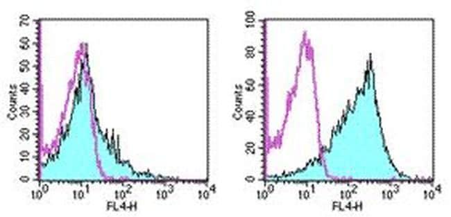 CD86 (B7-2) Antibody in Flow Cytometry (Flow)