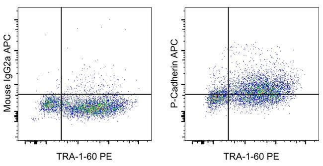 P-Cadherin Antibody in Flow Cytometry (Flow)